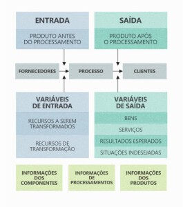 """""""Como Melhorar Processos"""", por Daniela Faria, da Opuspac 3"""