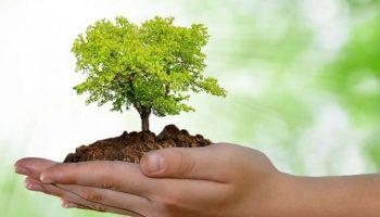 Dia-Mundial-do-Meio-Ambiente-2-1024x635