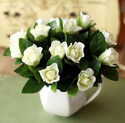planta-gardenia-quem-realiza
