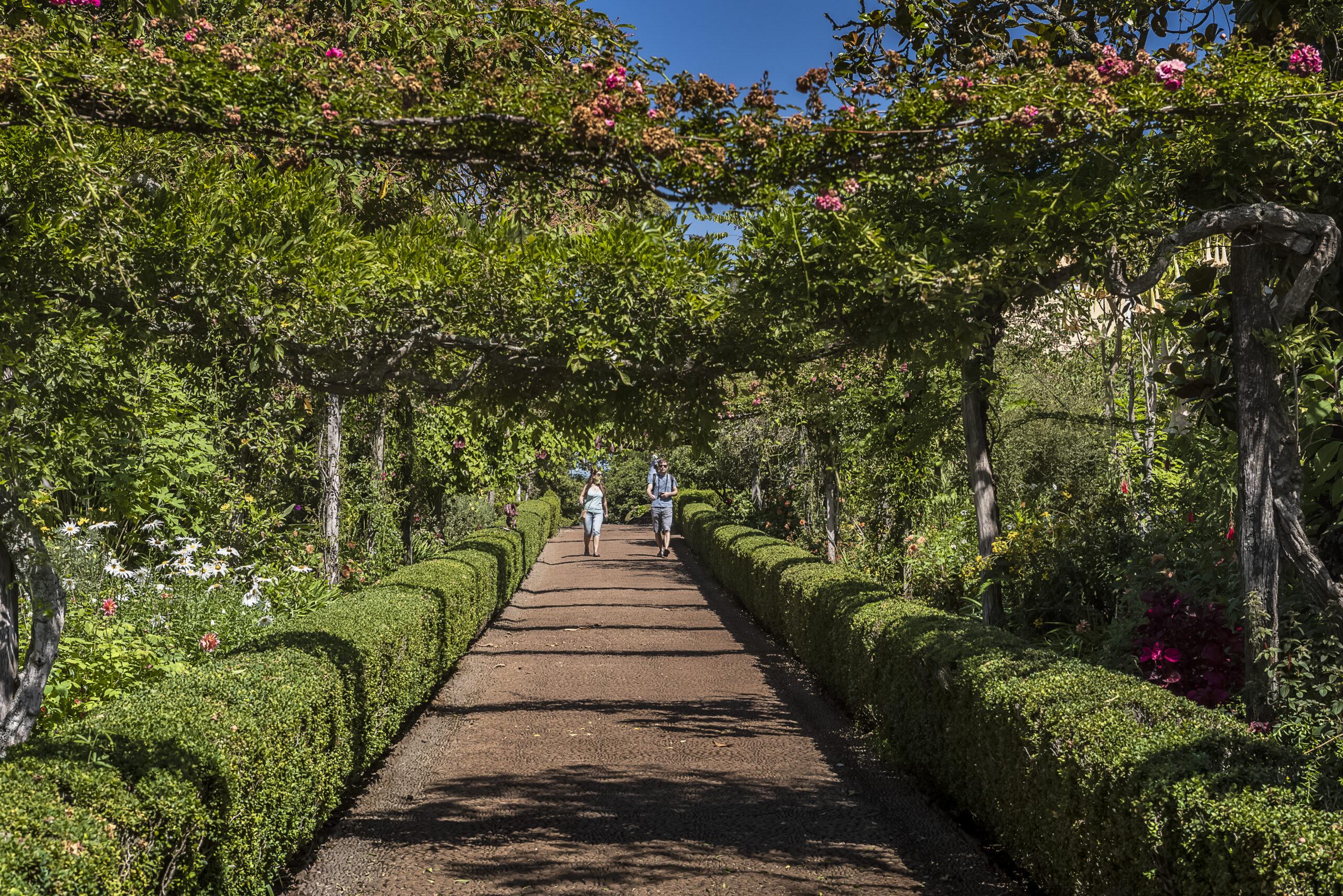 4 maravilhas do paisagismo na Ilha da Madeira 3