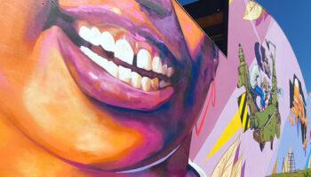 Ribeirão Preto ganha seu maior painel de arte urbana a céu aberto 2